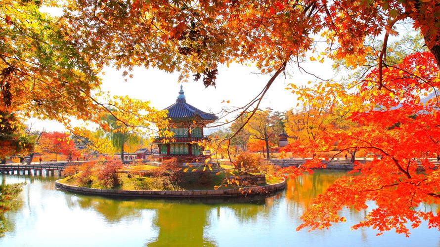 Kinh nghiệm xin visa du lịch Hàn Quốc mới nhất 2019