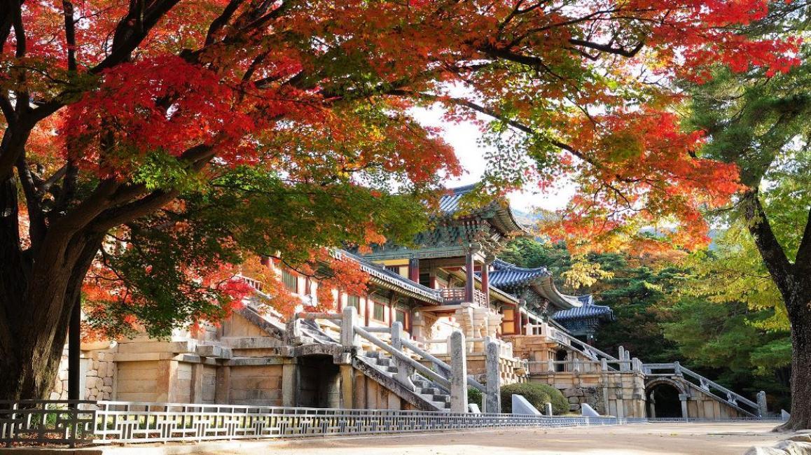 Top 10 địa điểm du lịch đẹp nhất Hàn Quốc